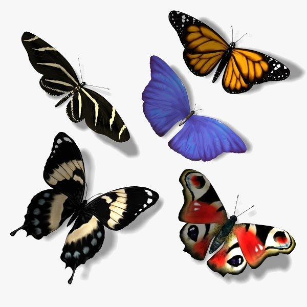 5 butterflies 3d 3ds