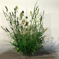 3d model pc grass