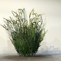 Grass_09.zip