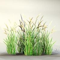 pc grass 3d model