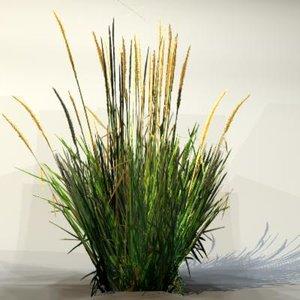 maya pc grass