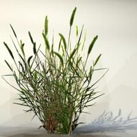 pc grass max