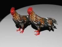 Red cock.rar