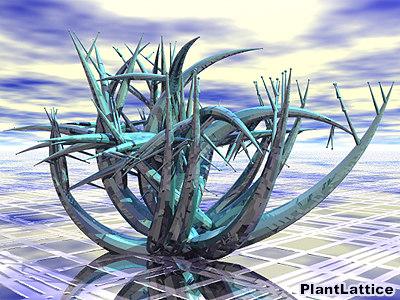 maya plant groboto