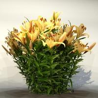 Flower_020.zip