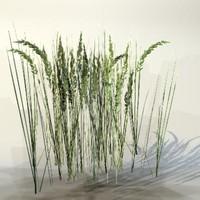 3d pc grass model