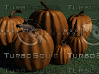 3d pumpkin thanksgiving november model