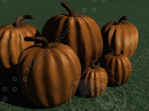 3d pumpkin thanksgiving november model