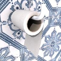 toilet paper 3d 3ds