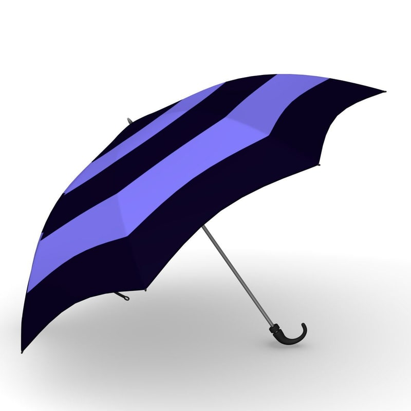3d umbrella accessories