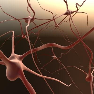 synapse 3d x