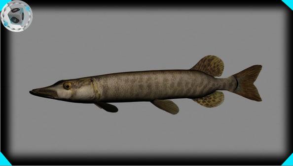 max muskie fish