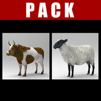 sheep bull 3d model