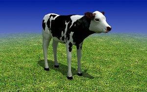 max calf cow