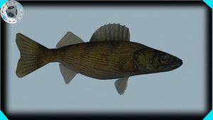 walleye fish 3d model