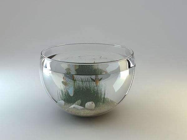 fish fishbowl 3d model