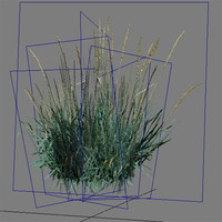 3ds max pc grass
