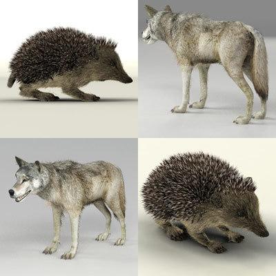 3d model s hedgehog wolf