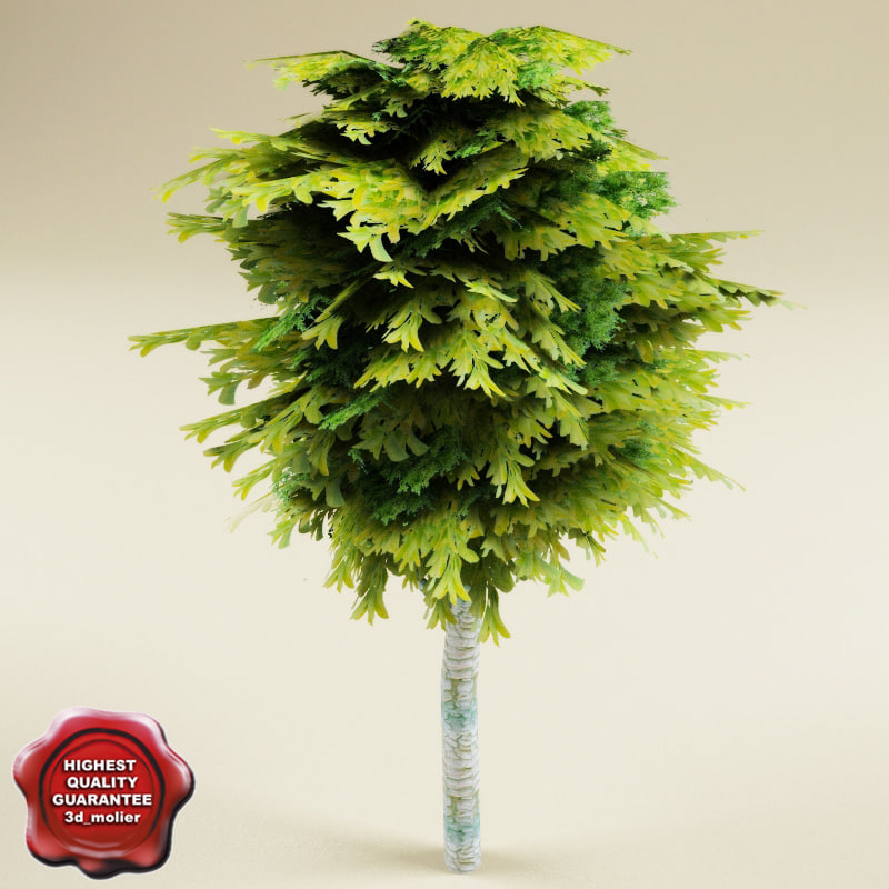 tree v3 3d model
