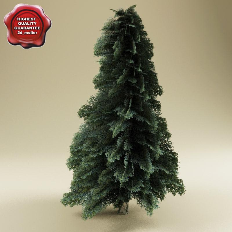 3d fir tree model
