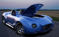 concept car cobra 3d model