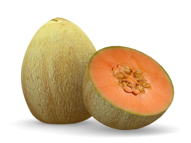3d model melon