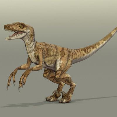 3d velociraptor dinosaur model