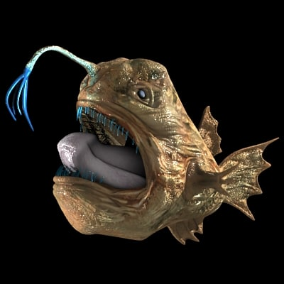 3d model angler fish for Where do angler fish live