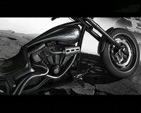 Custom Chopper(1)