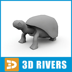 3d elephantine tortoise model