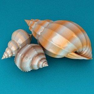 shell max
