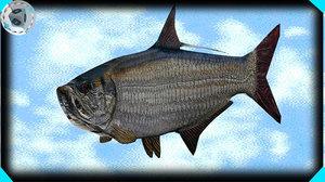 tarpon fish 3d 3ds