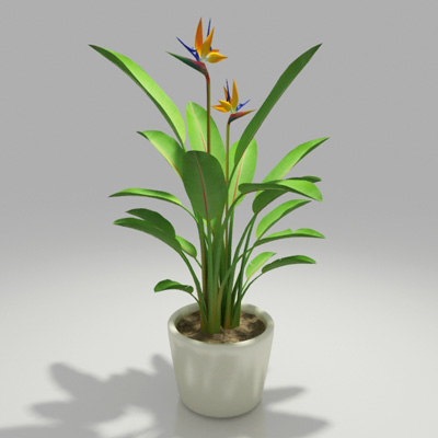 3d dwg indoor plant design