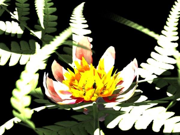 3d model flower fern
