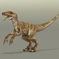 velociraptor dinosaur project 3d x