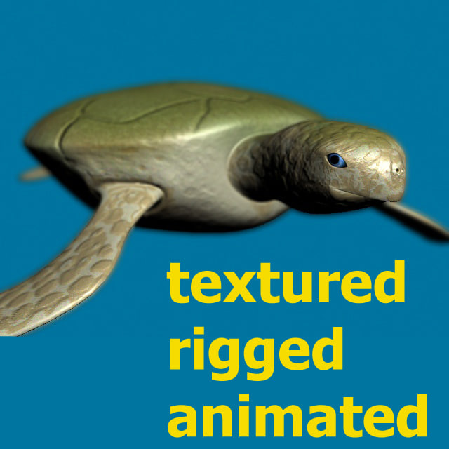 3d turtle rigged normal model
