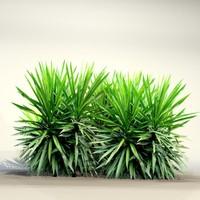 pc bush 3d max