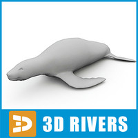 3d model polygonal fur seal