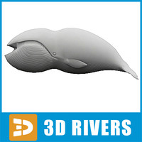 polygonal whale 3d 3ds