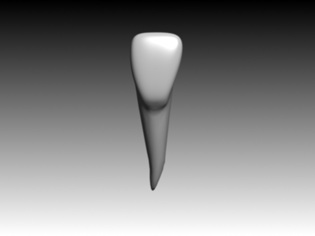 3ds central incisiv mandibular