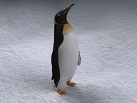 rigged penguin 3d model