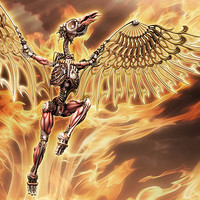 Phoenix - Evolution