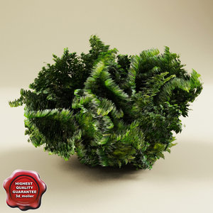 3ds max bush modelled