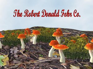 flowers mushrooms 3d model