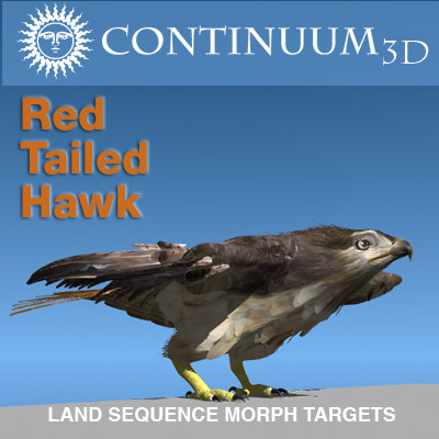 3d red tailed hawk -