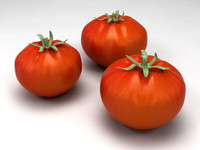 tomatoes modeled 3d model