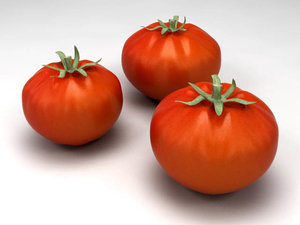 tomatoes modeled 3d model