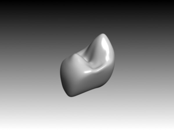 premolar mandibular crown 3ds