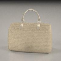 3d bag model