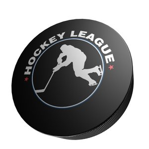 3d model of hockey puck